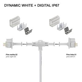 Y-ANSCHLUSSKABEL IP67 PRO DYNAMIC WHITE + DIGITAL